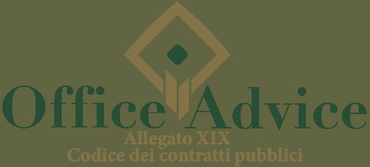 Allegato 19 - Codice dei Contratti Pubblici (Nuovo Codice degli Appalti)