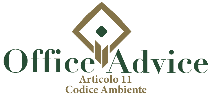 Art. 11 - Codice ambiente