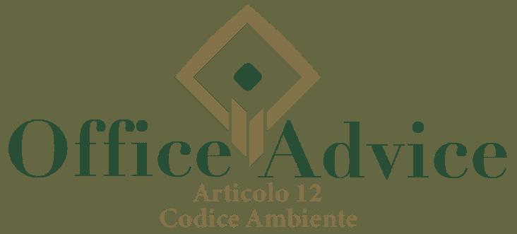 Art. 12 - Codice ambiente