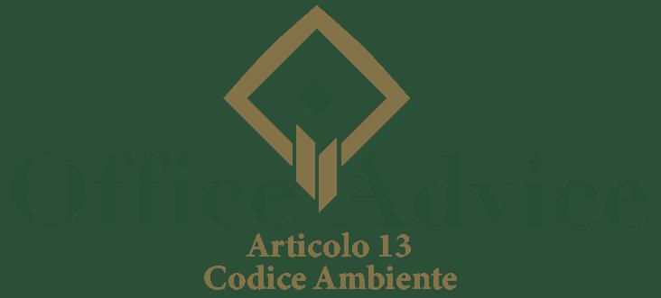 Art. 13 - Codice ambiente