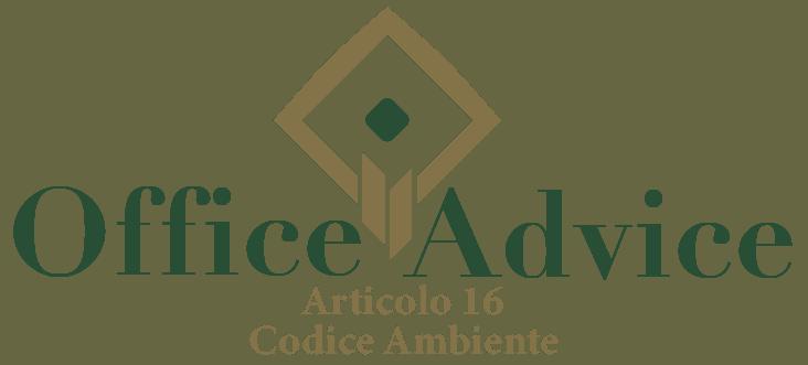 Art. 16 - Codice ambiente