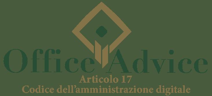 Art. 17 - Codice dell'amministrazione digitale