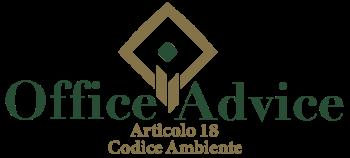 Art. 18 - Codice ambiente
