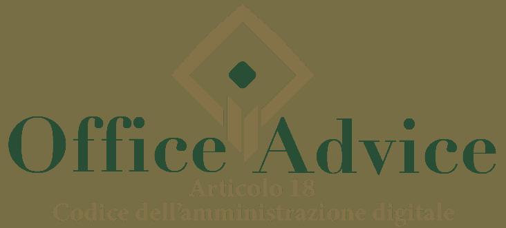 Art. 18 - Codice dell'amministrazione digitale
