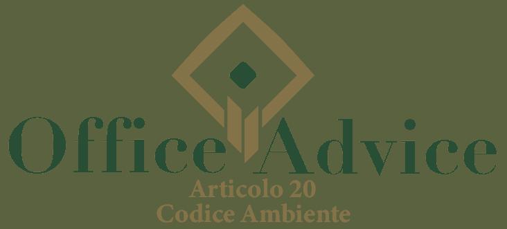 Art. 20 - Codice ambiente