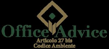 Art. 27 bis - Codice ambiente