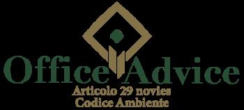 Art. 29 nonies - Codice ambiente
