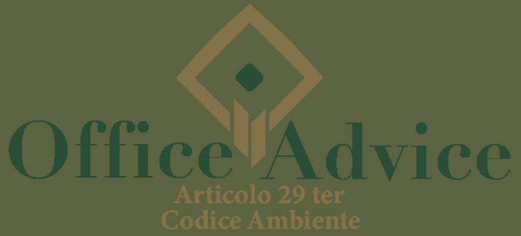 Art. 29 ter - Codice ambiente
