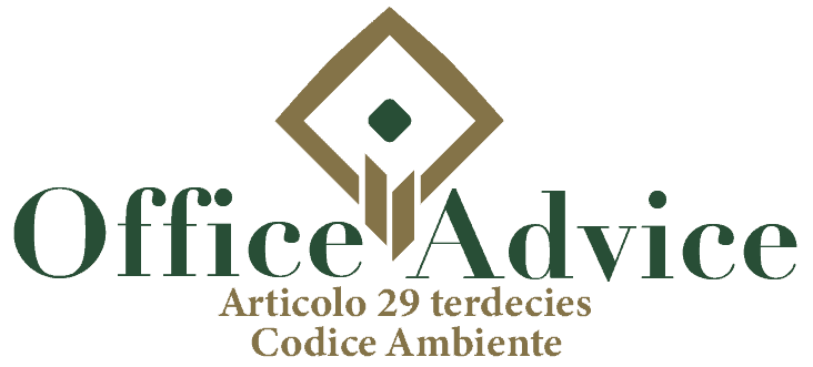 Art. 29 terdecies - Codice ambiente