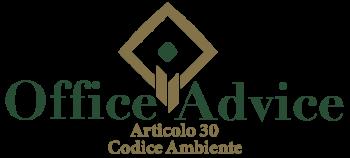 Art. 30 - Codice ambiente