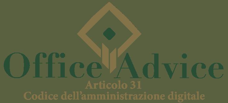 Art. 31 - Codice dell'amministrazione digitale