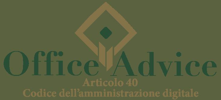 Art. 40 - Codice dell'amministrazione digitale