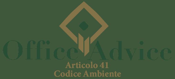 Art. 41 - Codice ambiente