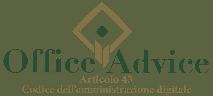 Art. 43 - Codice dell'amministrazione digitale