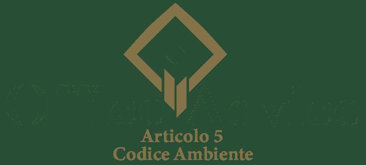 Art. 5 - Codice ambiente