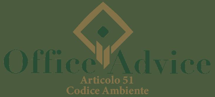 Art. 51 - Codice ambiente