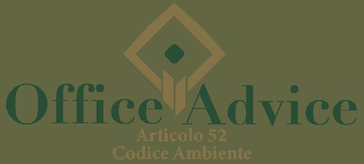 Art. 52 - Codice ambiente