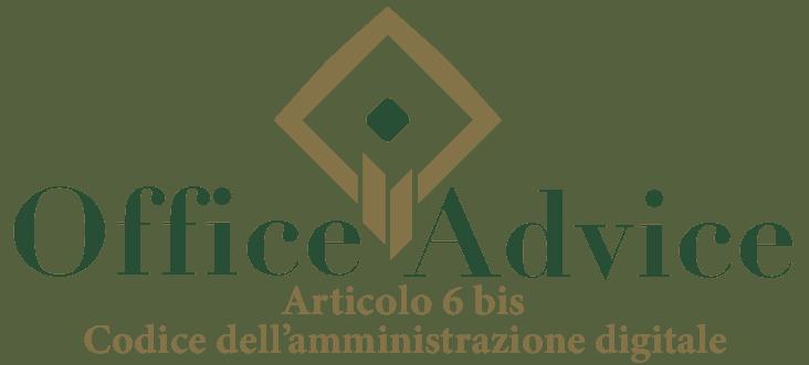 Art. 6 bis - Codice dell'amministrazione digitale