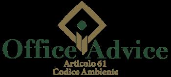 Art. 61 - Codice ambiente