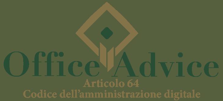 Art. 64 - Codice dell'amministrazione digitale