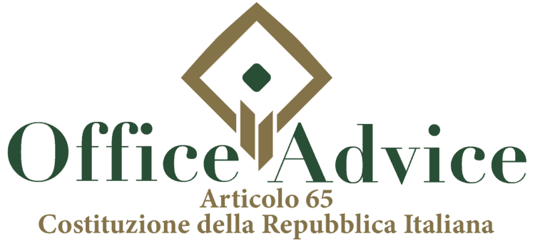 Articolo 65 - Costituzione della Repubblica Italiana
