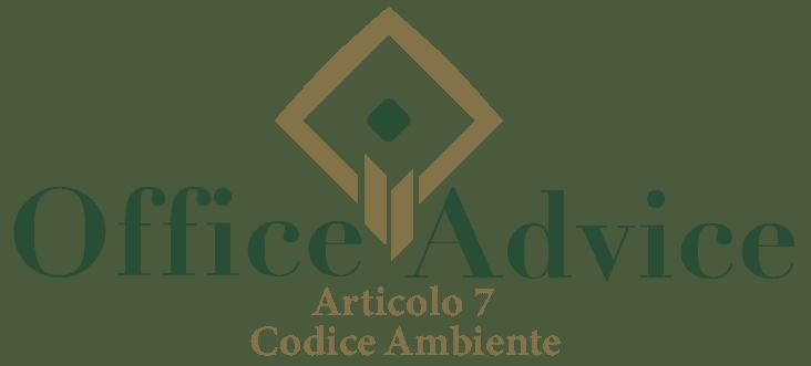 Art. 7 - Codice ambiente
