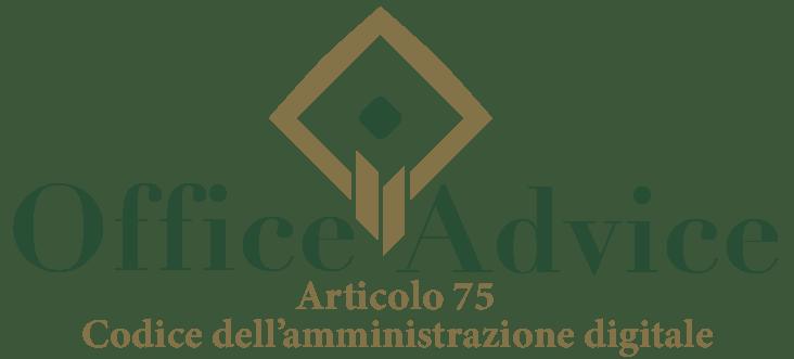 Art. 75 - Codice dell'amministrazione digitale