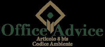 Art. 8 bis - Codice ambiente