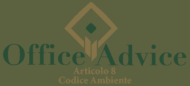 Art. 8 - Codice ambiente