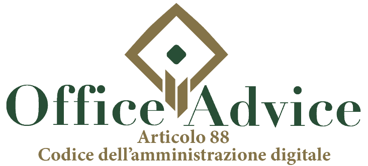 Art. 88 - Codice dell'amministrazione digitale